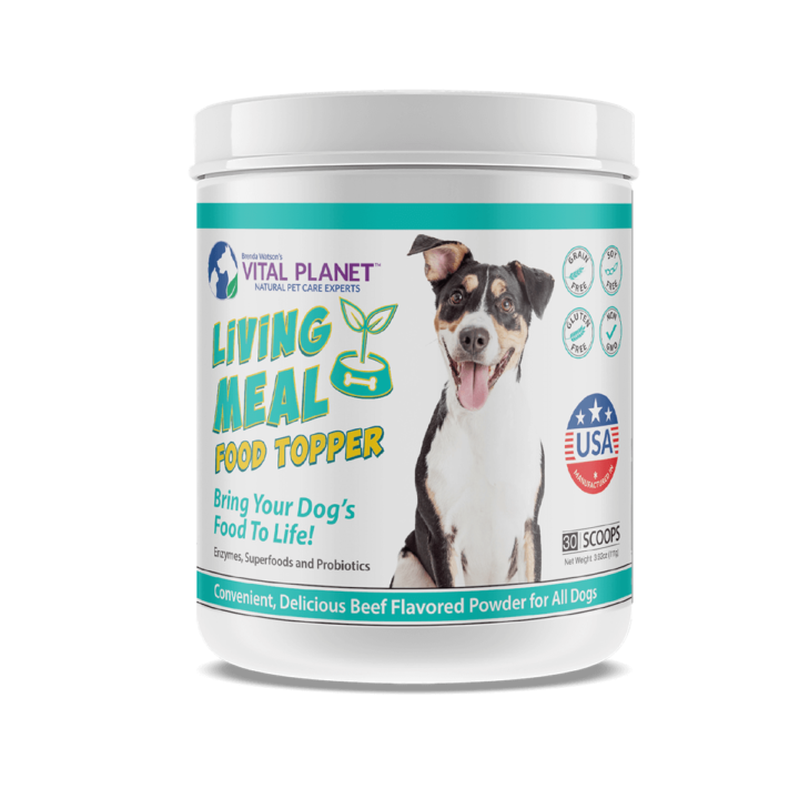Living Meal Dog