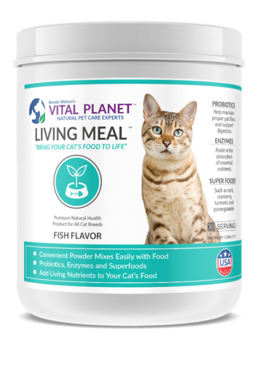 Living Meal for Cats