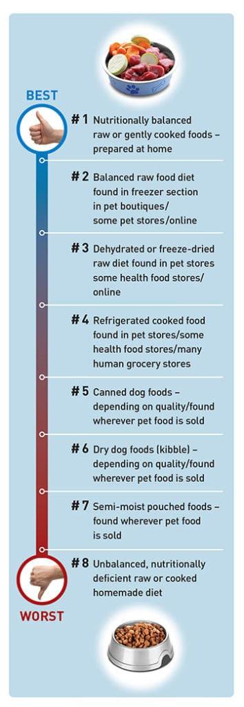 Diabetes in pets - Read labels-vitalplanet.com