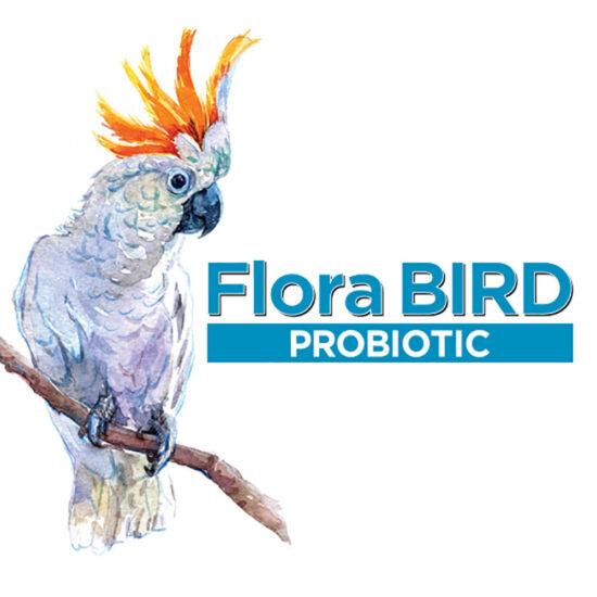 Flora Bird Probiotic