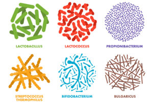 LOMD - good microbes