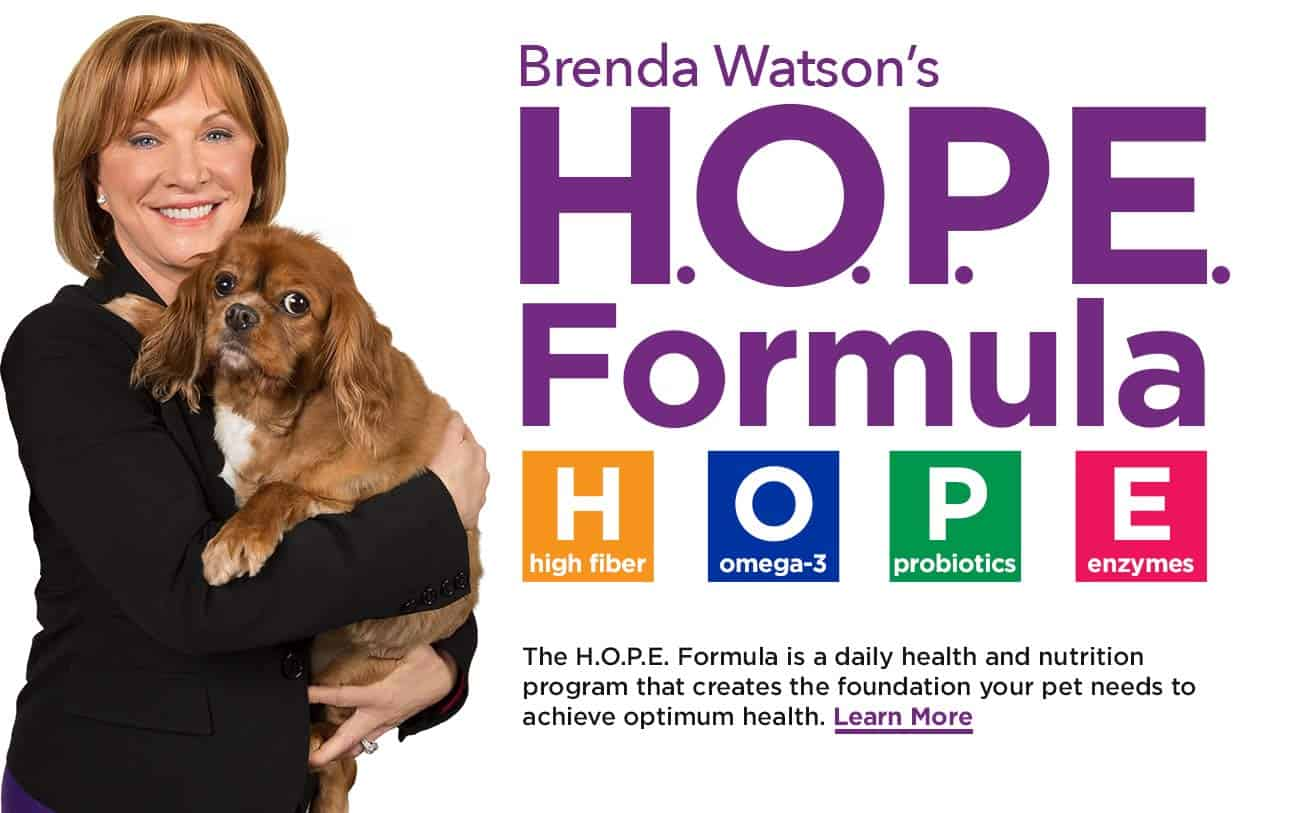 The HOPE Formula by Brenda Watson - Home