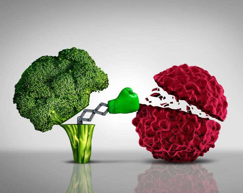 broccoli benefits continue to unfold-boxer