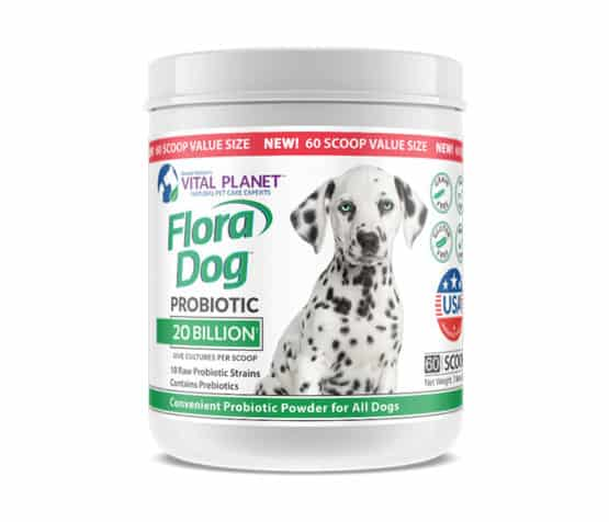 Flora Dog 20 Billion Probiotic Value Size