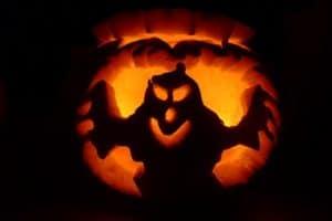 Halloween pet safety tips - keep this pumpkin up away from pet paws!