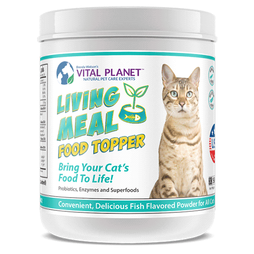 Living Meal Food Topper for Cats