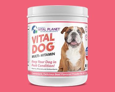 Vital Dog